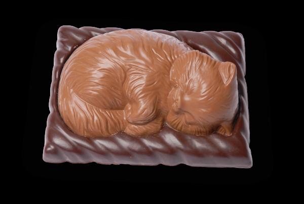 Schokoladen-Katze gefüllt mit Pralinen