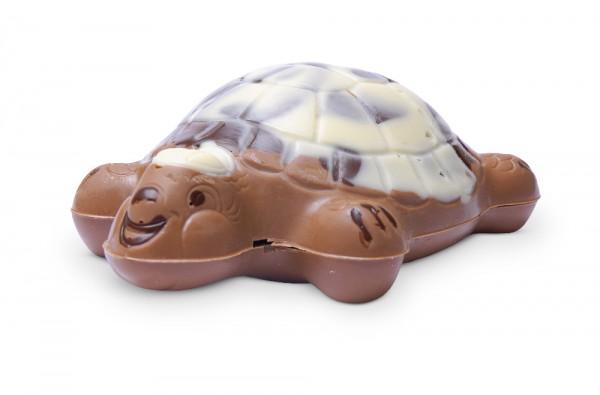 Schokoladen-Schildkröte gefüllt mit Pralinen
