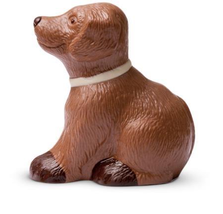 Hund aus Schokolade